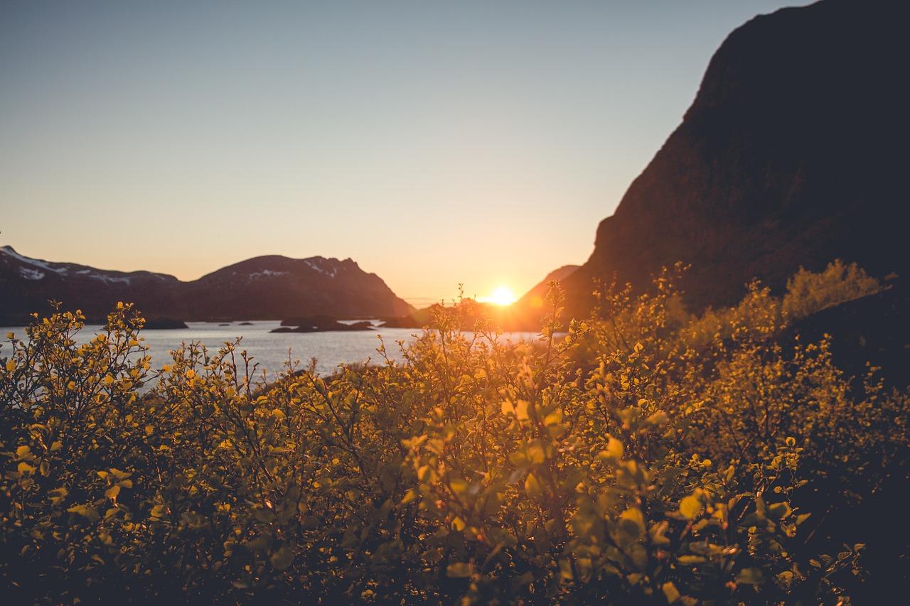 sunset-828687_1280